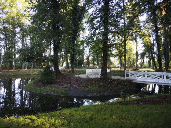 park w Zatoniu