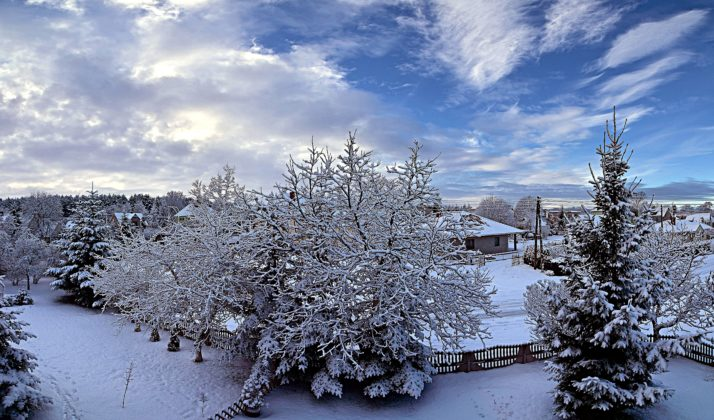 Zimowa Palmiarnia w Zielonej Górze